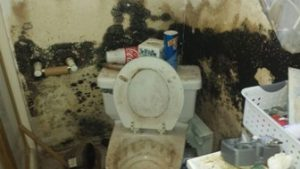 moldy toilet and bathroom from sewer overflow | DryCare Restoration | Best Water Fire Mold Damage Restoration and Crime Scene Cleanup, Los Angeles Ventura Orange County